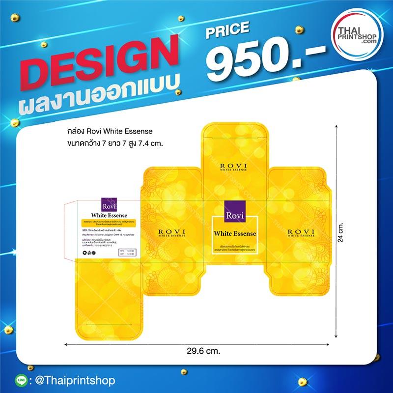 รับออกแบบกล่องใส่ผลิตภัณฑ์